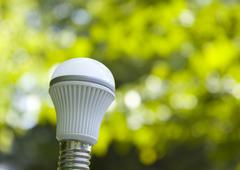 Image of a LED bulb and sunshine filtering through foliage - stock photo
