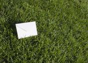 Stock Photo of Lawn and an envelope