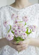 Hands holding a flower bouquet Stock Photos