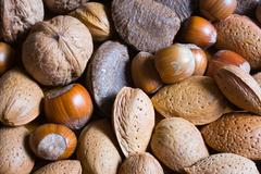 Mixed nuts in the shell selection of brazil,almonds,walnut and hazelnuts Stock Photos