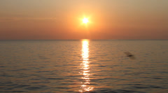 Amazing sunset over the sea Stock Footage