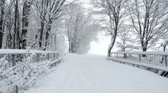 snow covered path over bridge near winter forest - stock footage