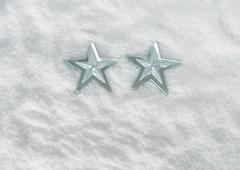 Star ornaments - stock photo