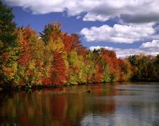 colorful trees reflected in lake. - stock photo