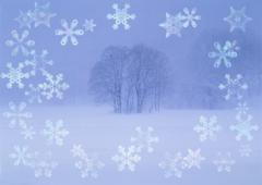 Grove of trees and snow crystals, CG Stock Photos