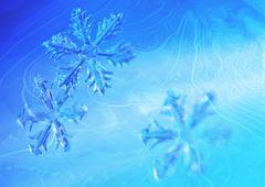 Snow crystal, CG Stock Photos