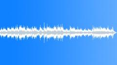 Delicate Conversation 60 - stock music
