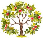 Stock Illustration of Abstract fruitful apple tree