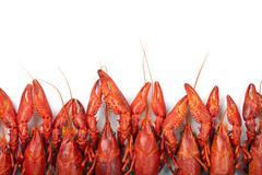 Many red crayfish Stock Photos