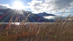 Sunny Grasses Lens Flare to Mountains Sun and Chilkat Inlet Stock Footage