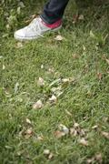 Foot with a sneaker on green grass - stock photo