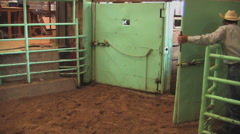 Cattle auction 1 Stock Footage