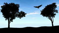 Bald Eagle above the trees Stock Footage