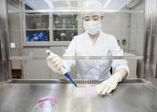 Stock Photo of A researcher doing experiment