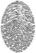 Detailed Forensic Fingerprint Stock Illustration