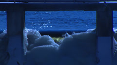 Stone Bridge and Rapids in Winter HD Video Stock Footage