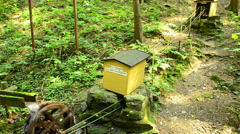 Stock Video Footage of fairytale forest in Wunschendorf Germany with watermill games