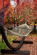 Garden hammock in the yard Stock Photos