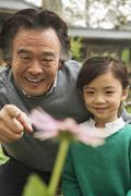 Grandfather and granddaughter looking at flower in garden - stock photo
