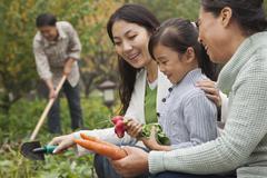 Happy family harvesting vegetables in garden - stock photo