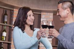 Mature Couple at a Winetasting, Toasting Stock Photos