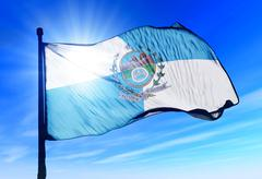 rio de janeiro (brazil) flag waving on the wind - stock illustration
