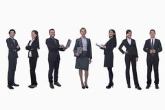 Medium group of business people in a row, portrait, full length, studio shot - stock photo