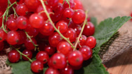 Stock Video Footage of Rptating Red Currants (loopable)