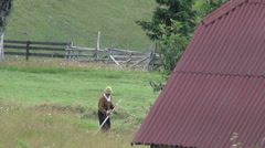 Old man mowing the hay on the meadow, field, feed, pasture, farmer Stock Footage