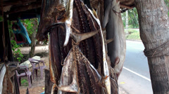 Trade stand with stockfish  at a road. Stock Footage