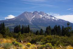 Hot summer day weed california base mount shasta mountain cascades Stock Photos