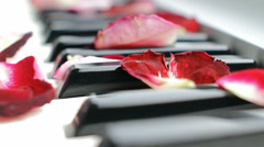 Romantic Piano Melody Stock Footage