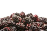 Stock Photo of bowl of marionberries on white