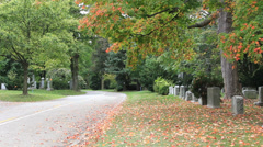 Autumn Path in Cemetery Stock Footage