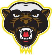 honey badger mascot head - stock illustration