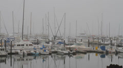 Monterey Bay Stock Footage