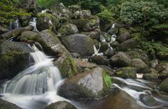 landscape of becky falls waterfall in dartmoor national park england - stock photo