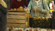 Stock Video Footage of Ladies shop for tiny pumpkins at Farmer's Market