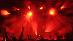 People at rock concert. Stock Footage