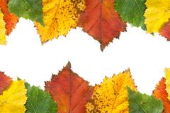 Autumn leaves frame with copy space Stock Photos