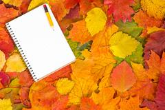 Stock Photo of notebook and autumnal leaves