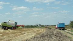 Wheat Harvest Stock Footage