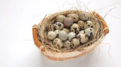 Basket of quail eggs Stock Footage