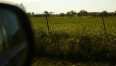 Rearview side car mirror while driving by grassy meadow with fence sunrise Stock Footage