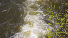 Wild stream Stock Footage