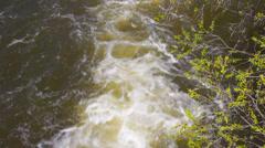 Wild stream - stock footage