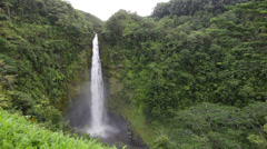 Hawaii Akaka Falls - Hawaiian waterfall Stock Footage