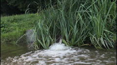 Water source in nature Stock Footage