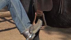 Cowboy Asennus Horse PAL Arkistovideo