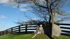 Skeleton HIllside Color 1 Stock Footage